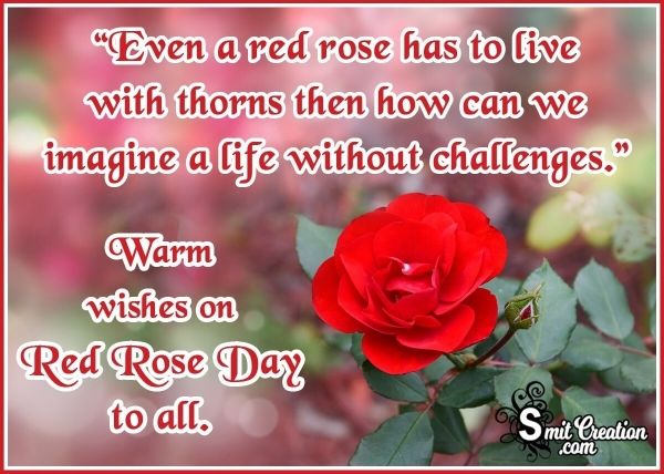 Happy Red Rose Day Status for Whatsapp
