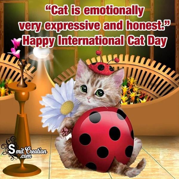 International Cat Day Slogans