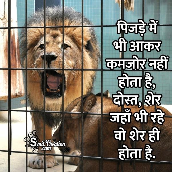 Lion Status For Whatsapp