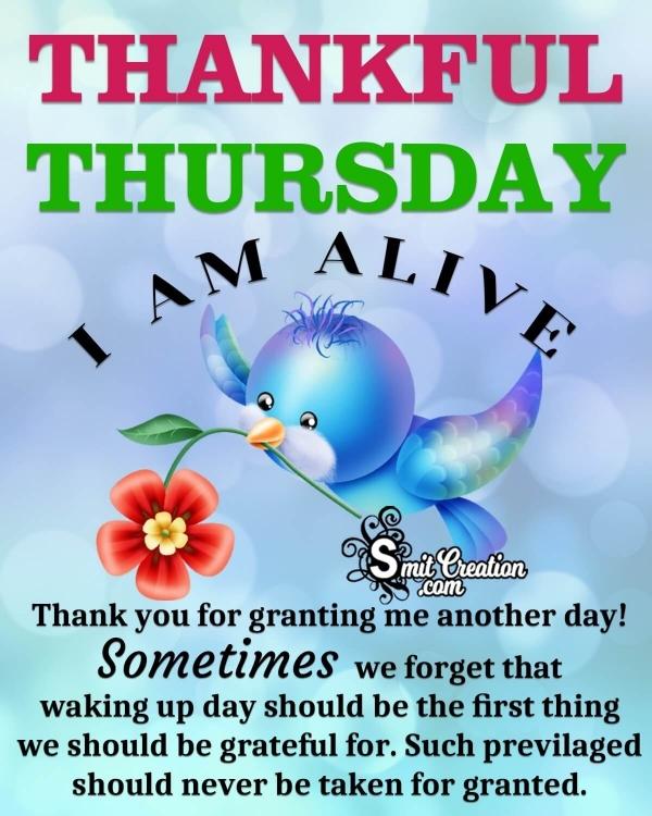 Thankful Thursday Status