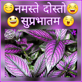 Shubh Prabhat Dosto