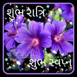 Shubh Ratri Gujarati Images