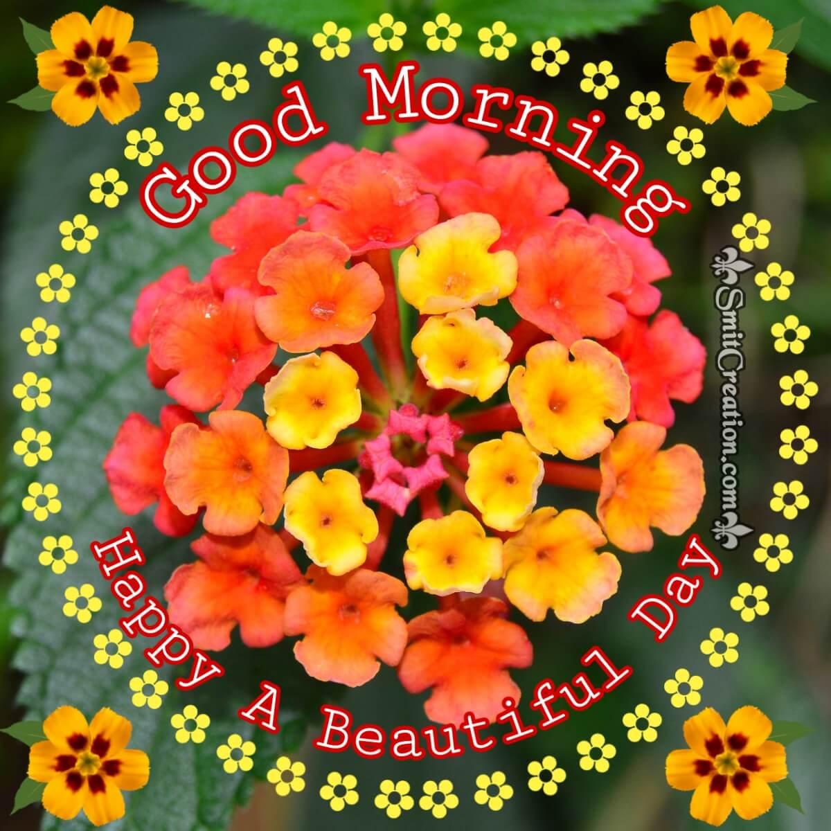 Good Morning Lantana Flower Beautiful Graphic