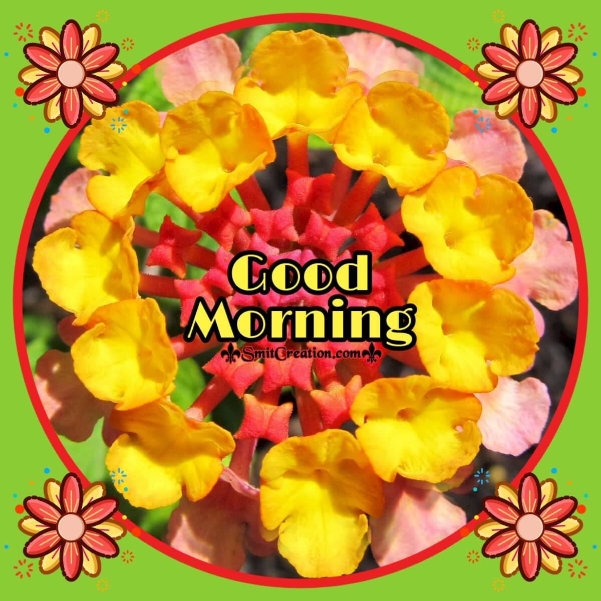 Good Morning Lantana Flower Card