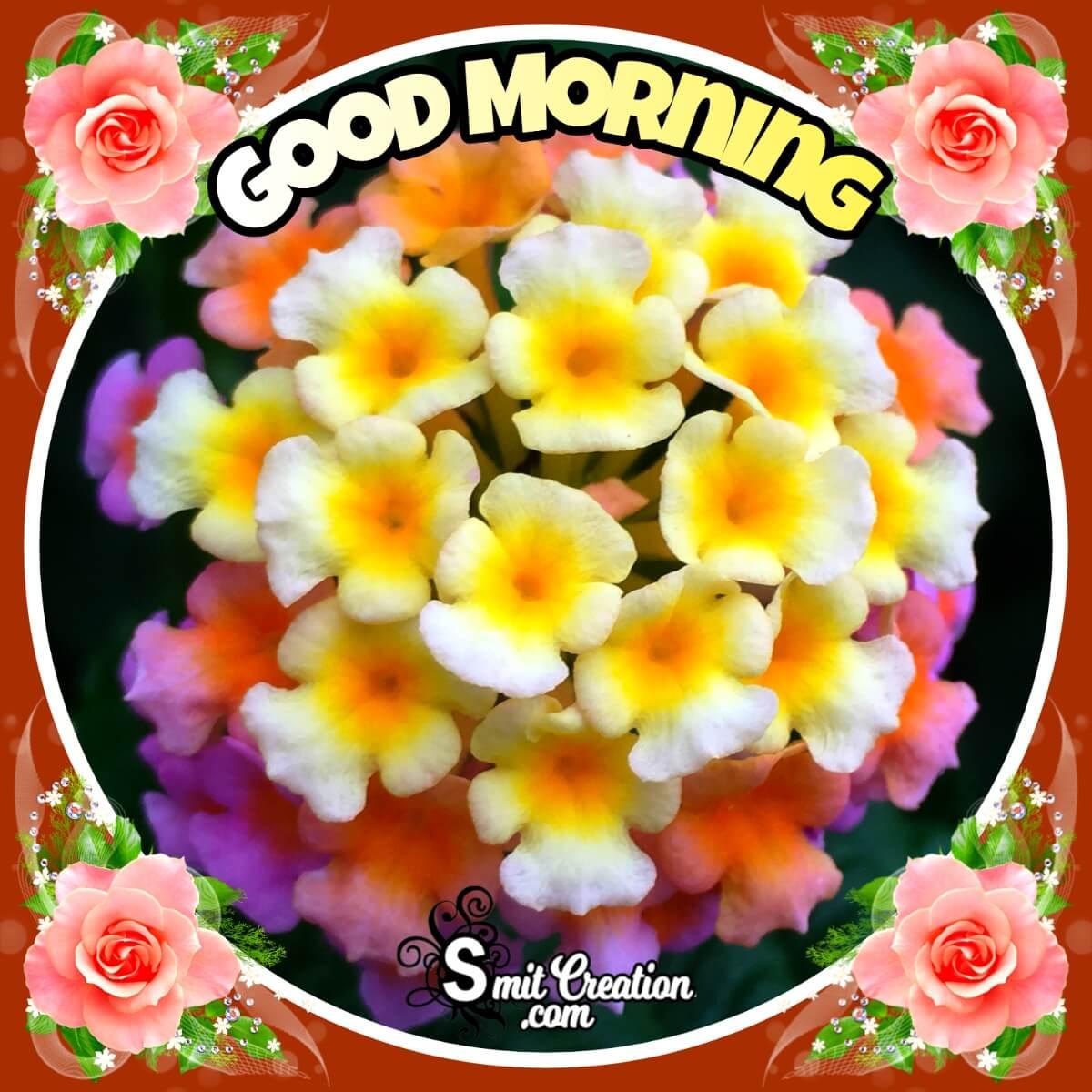 Good Morning Lantana Flower Greeting