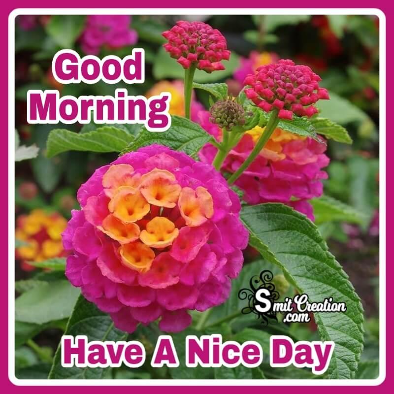 Good Morning Lantana Flower.jpg