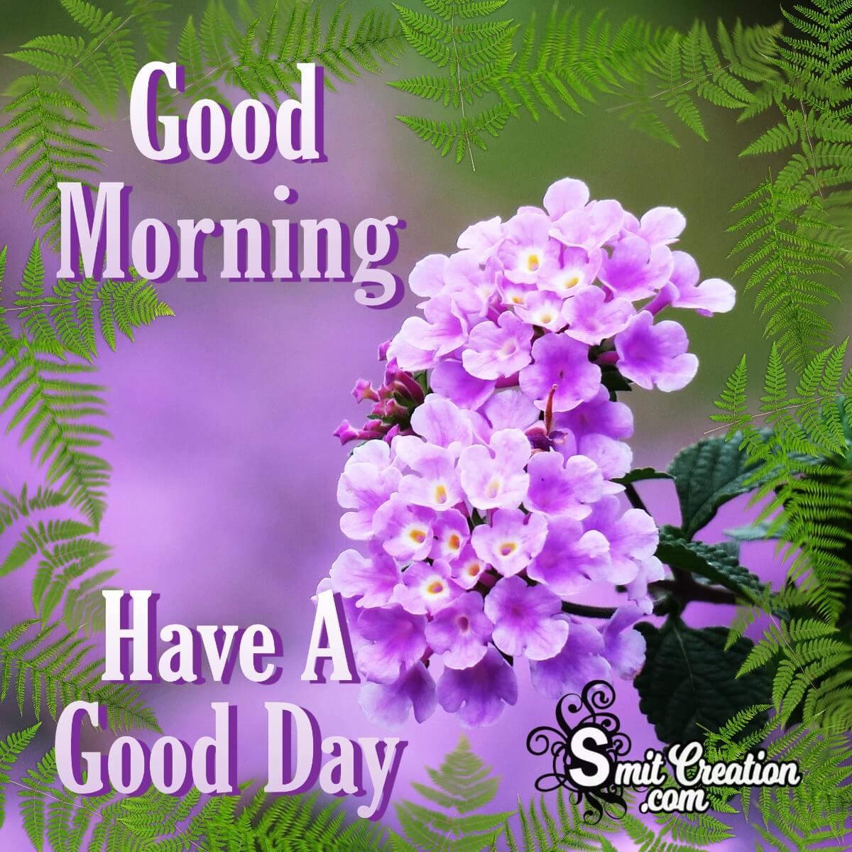 Good Morning Lavender Lantana Flower