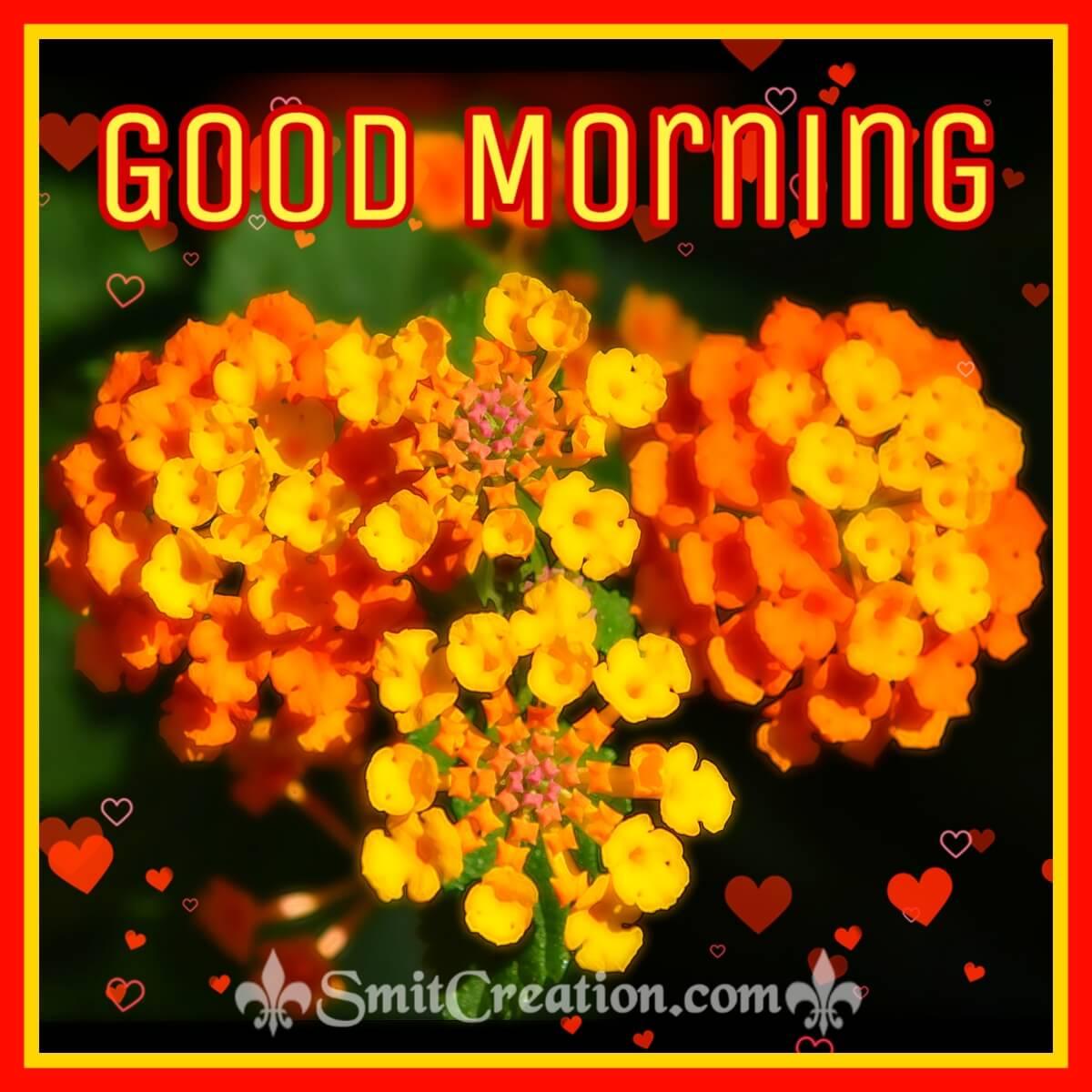 Good Morning Shining Lantana Flower